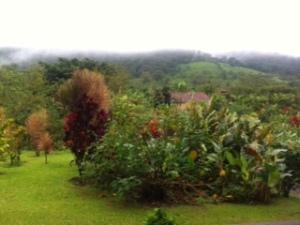 27 Arenal Kioro View 4